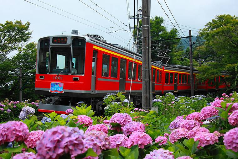 箱根登山電車