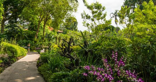 ボタニック・ガーデン