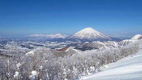 北海道のスキー&スノーボード旅行!人気宿ランキング