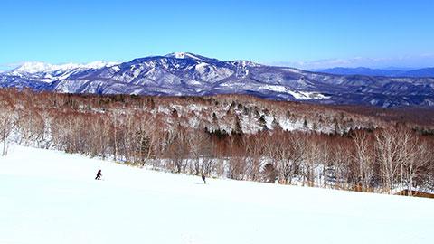 関東のスキー&スノーボード旅行!人気宿ランキング