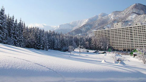 新潟・長野のスキー&スノーボード旅行!人気宿ランキング