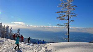 2014年スキー&スノーボード旅行 注目エリアランキング