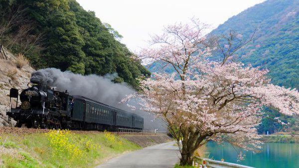 SL Hitoyoshi (Kyushu Railway Company, Kagoshima Main Line/Hisatsu Line)