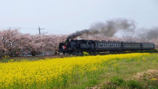 SL真冈(真冈铁道・真冈线)