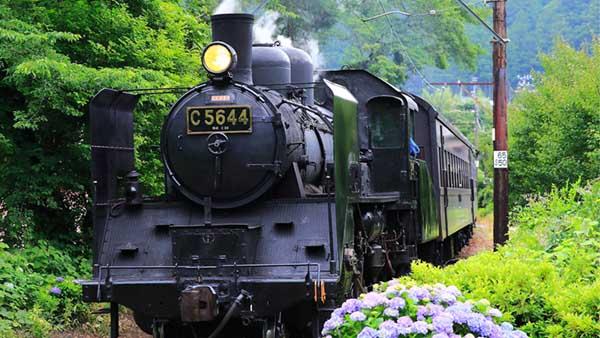 SL Express (Oigawa Railway, Oigawa Main Line)