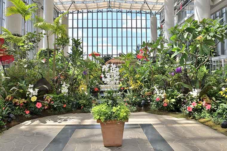 淡路夢舞台 奇跡の星の植物館