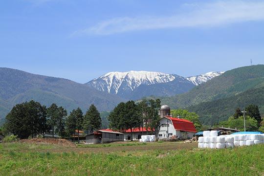 北アルプス牧場