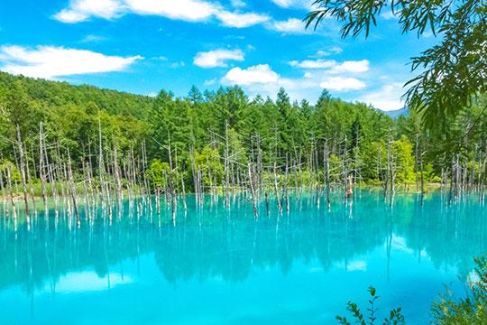 白金・青い池