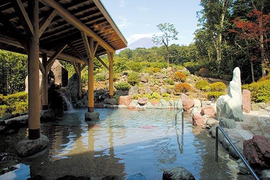 御胎内温泉健康センター(富士山樹空の森)