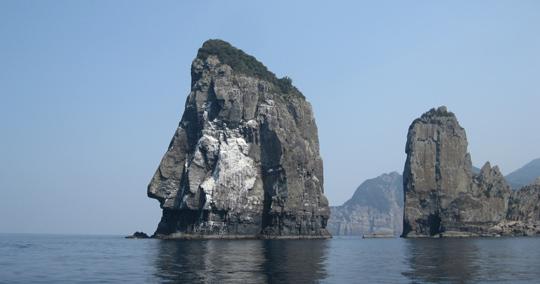 ナポレオン岩(甑島)