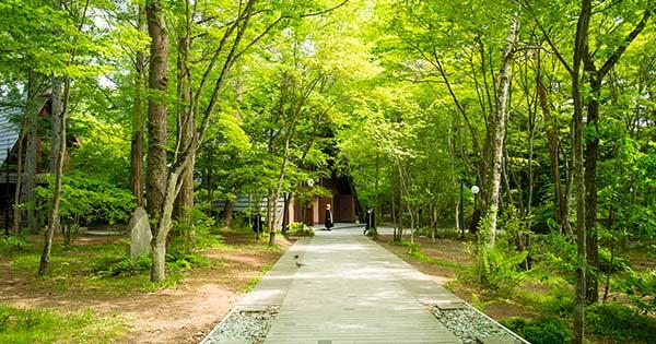 現地スタッフ厳選!軽井沢のおすすめ観光スポット