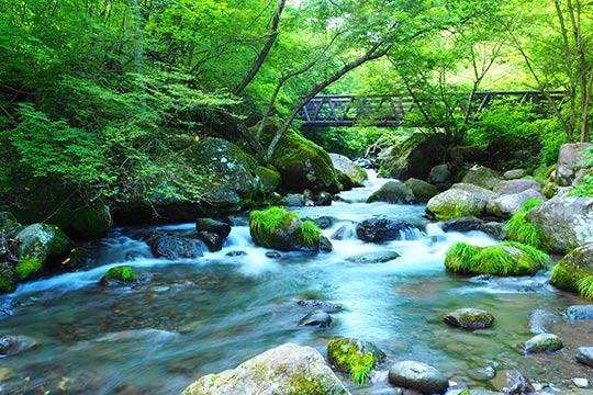 吐竜の滝(どりゅうのたき)