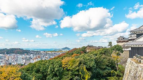 松山おすすめ観光スポット