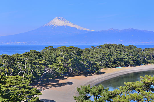 御浜岬の富士山