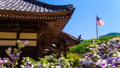 下田のおすすめ観光名所!定番モデルコースに名物グルメも