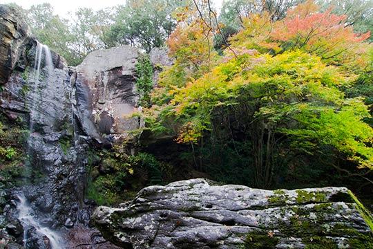 銚子渓 自然動物園お猿の国