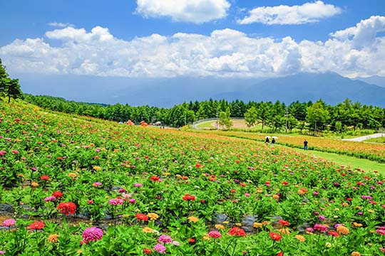 富士見高原リゾート