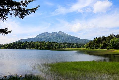 尾瀬国立公園(福島県)
