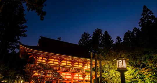 高野山内 奥之院ナイトツアー