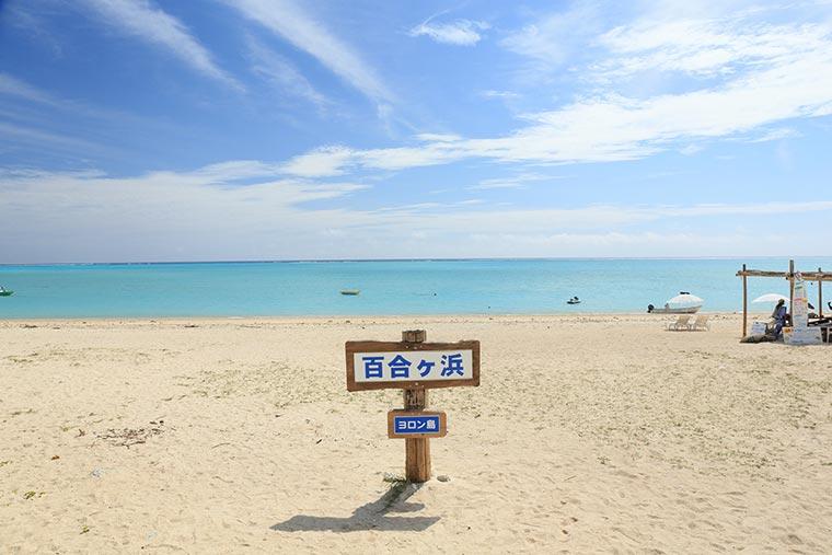 百合ヶ浜・大金久海岸