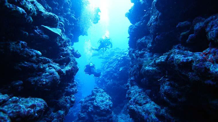 与論島のダイビングスポット
