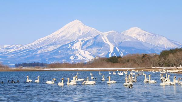 冬の磐梯山と猪苗代湖