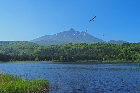 北海道 オタトマリ沼
