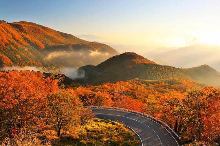 日光(栃木県)