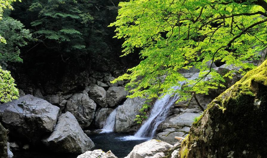 Gorge Osugidani (préfecture de Mie)