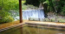 Kayabuki no Sato Yakushi Onsen Hatago