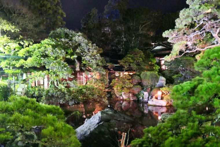 ライトアップされた池庭