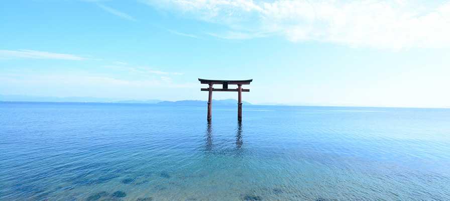 琵琶湖の鳥居(白鬚神社)