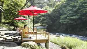 【Finding Japan&Me】編集部厳選 日本の夏旅