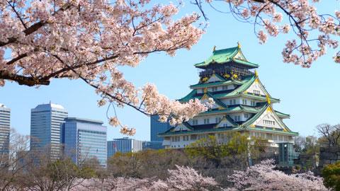 大阪桜の名所 お花見スポット15選!桜まつり・ライトアップ情報2019