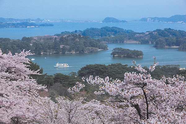 Saigyo-Modoshi-no-Matsu Park