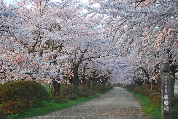 Kitakami Scenic Area