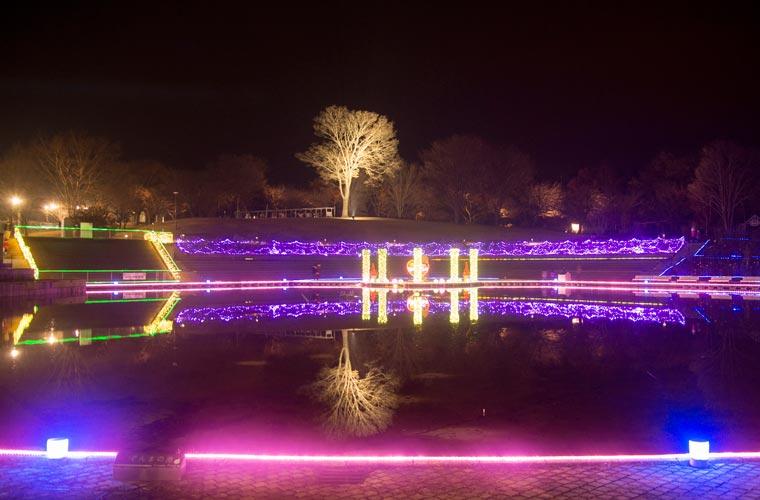 ぐんまフラワーパーク イルミネーション「妖精たちの楽園」