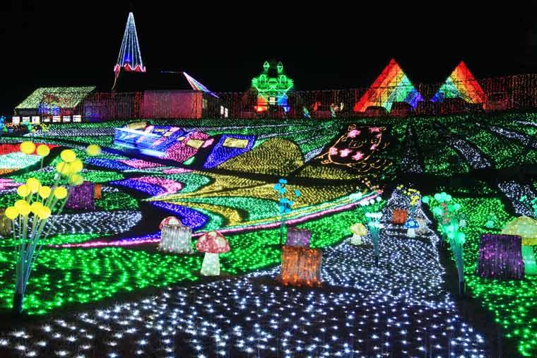 東京ドイツ村 Winter Illumination