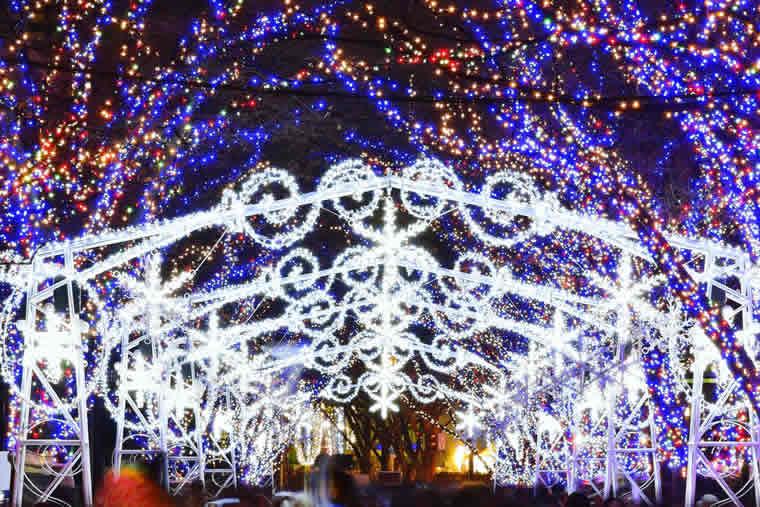 大阪光の饗宴2017(御堂筋イルミネーション2017・OSAKA光のルネサンス2017)
