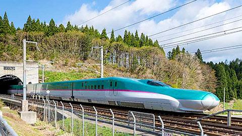 新幹線半額キャンペーンで行きたい!おすすめの観光地