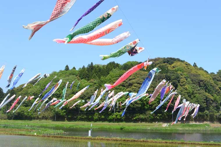 いきいき山田 鯉のぼりまつり