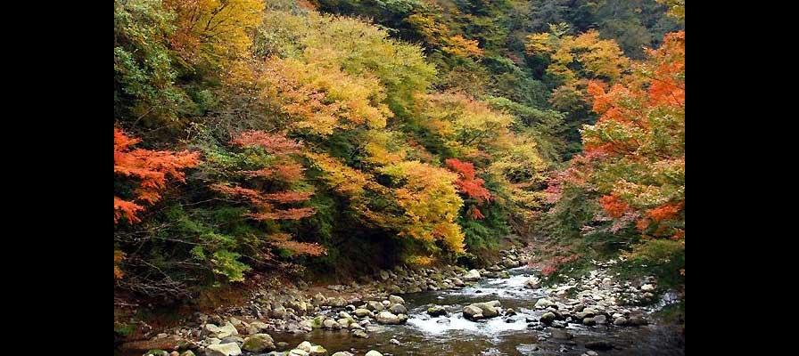 Yumoto, Hakone