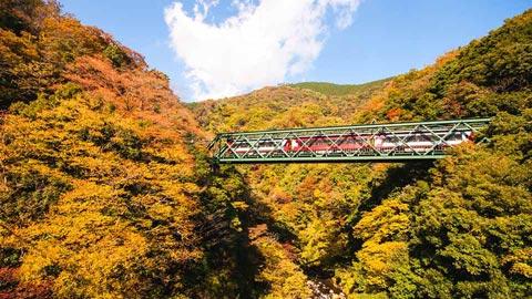 箱根のおすすめ紅葉名所12選!2017年見頃情報も随時更新