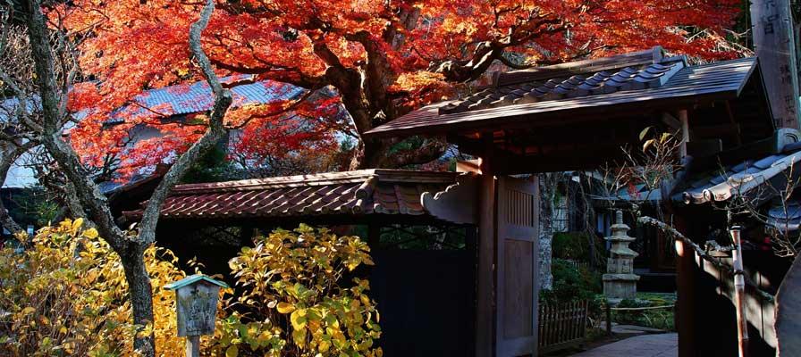 Le temple Toke-ji