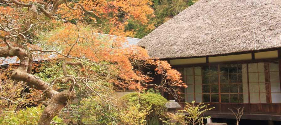Le temple Jochi-ji
