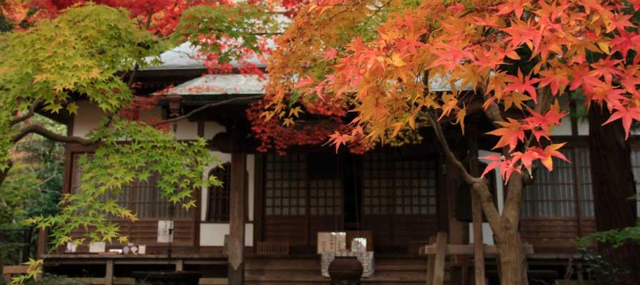 Le temple Kakuon-ji