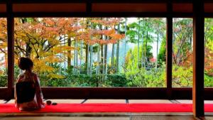 秋まっさかり!京都・鴨川上流エリアの紅葉スポット