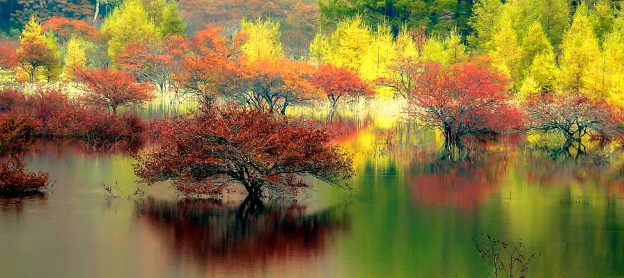 Odashirogahara Marshland (Lake Odashiro)