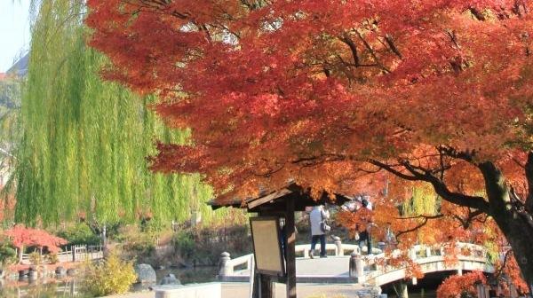 円山公園・知恩院