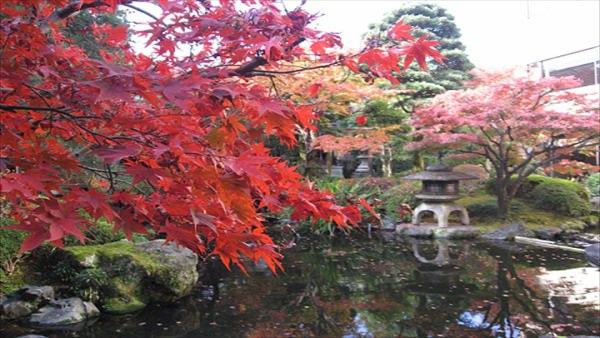 御所西京都平安ホテル庭園